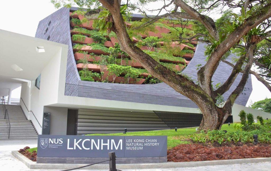 Lee Kon Chian Natural History Museum (Singapore) | 6 Best Natural History Museums In The World | Brain Berries