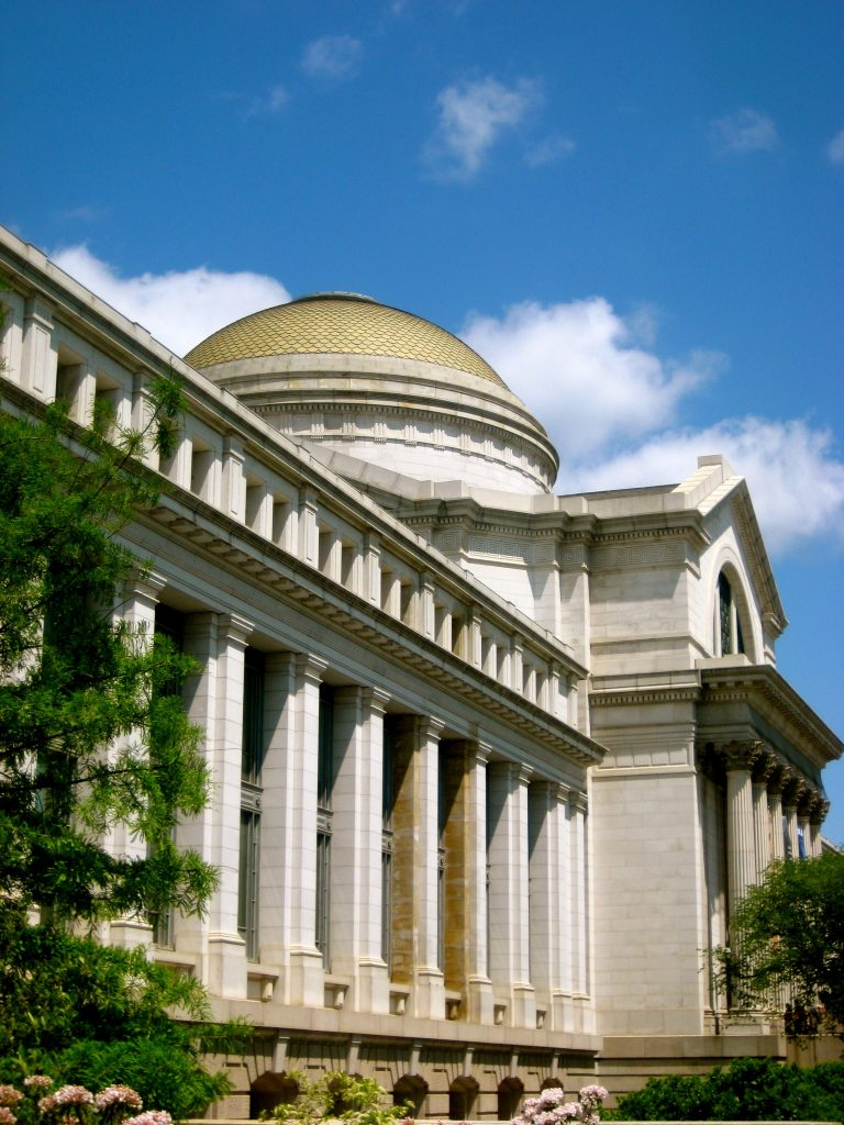 National Museum of Natural History (Washington DC) #2 | 6 Best Natural History Museums In The World | Brain Berries