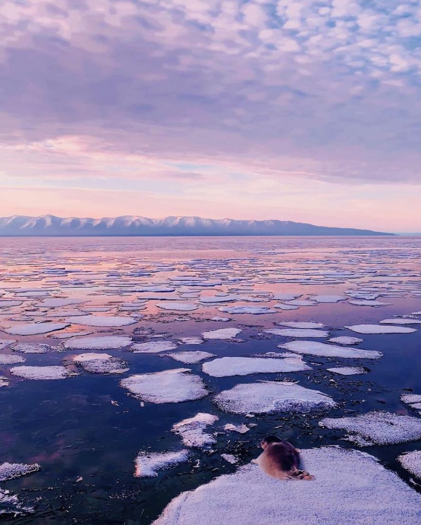Photographer Visits Baikal, The Oldest Lake On Earth, And It's Absolutely Mind-Blowing #4 | ZestRadar