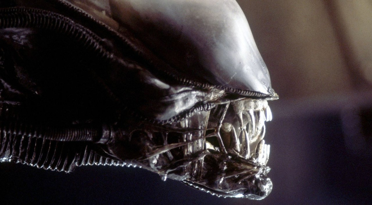 7. Alien (1979) | 7 Most Visually Striking Horror Movies | Brain Berries