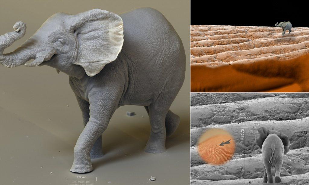 Jonty Hurwitz | 8 Astoundingly Tiny Art Pieces | BrainBerries