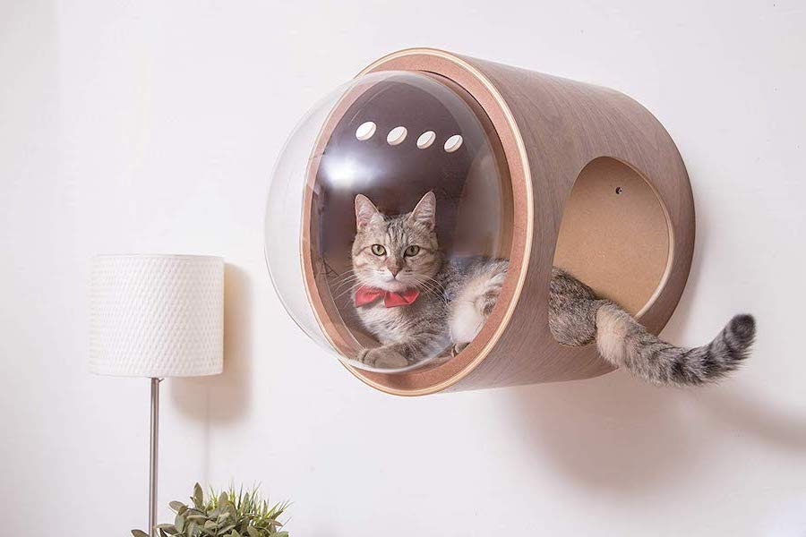 Cat Privacy | Striking, Modern, and Incredible Furniture Designs | Brain Berries