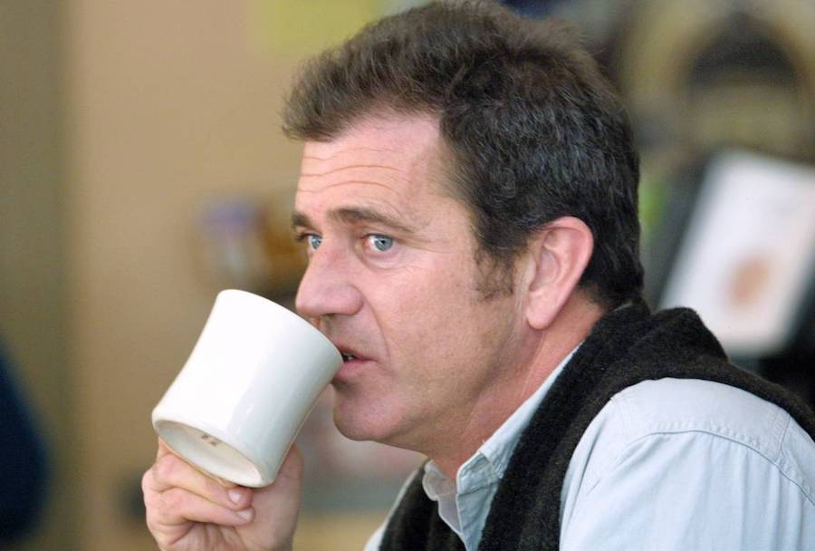 Mel Gibson | 10 Celebrities that Have had Problems with Alcohol | ZestRadar
