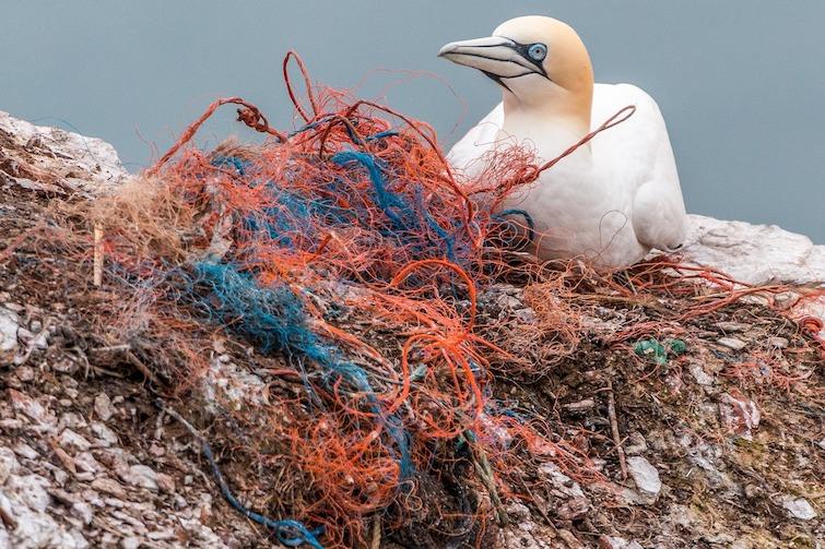 Photographer Reveals Shocking Pictures Of The Caribbean Full Of Debris, Plastic, And Styrofoam #4   ZestRadar
