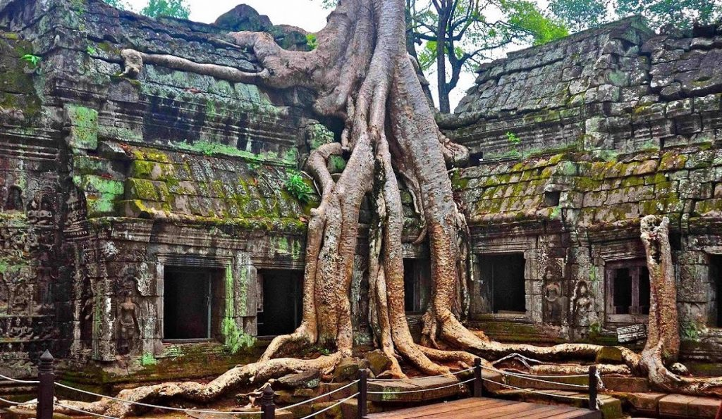 Ta Prohm Temple, Cambodia | 12 Most Iconic Photography Locations | Brain Berries
