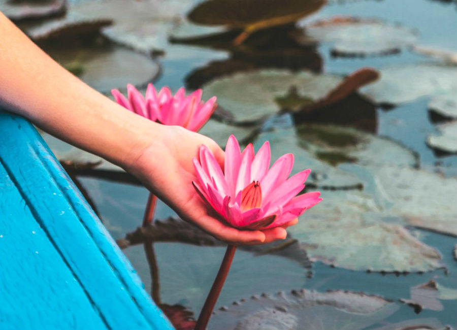There's A Lake Of Pink Lotus Flowers In Thailand And It's Ridiculously Beautiful #3 | ZestRadar