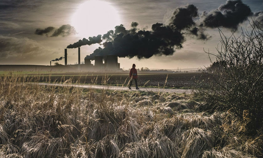 We're facing mass extinction | 7 Global Problems That Are Destroying The Earth As We Speak | ZestRadar