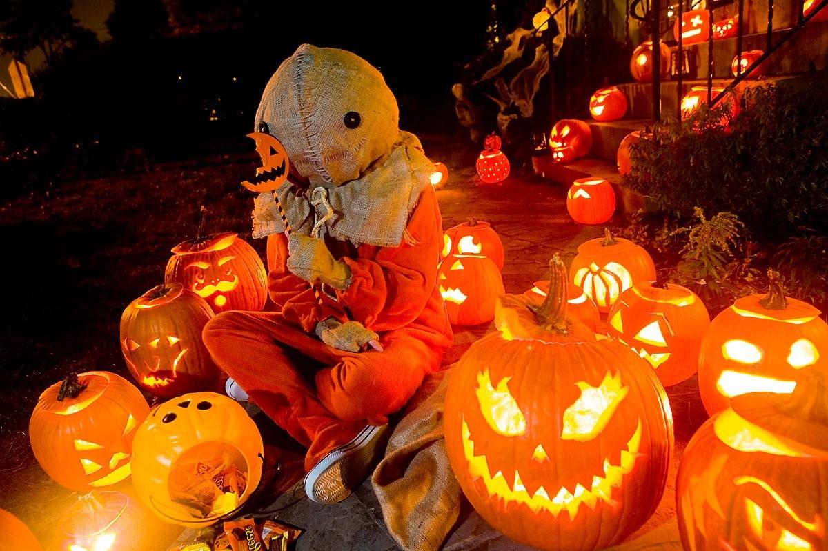 Кошелек или смерть | 10 лучших фильмов для Хэллоуина | Brain Berries