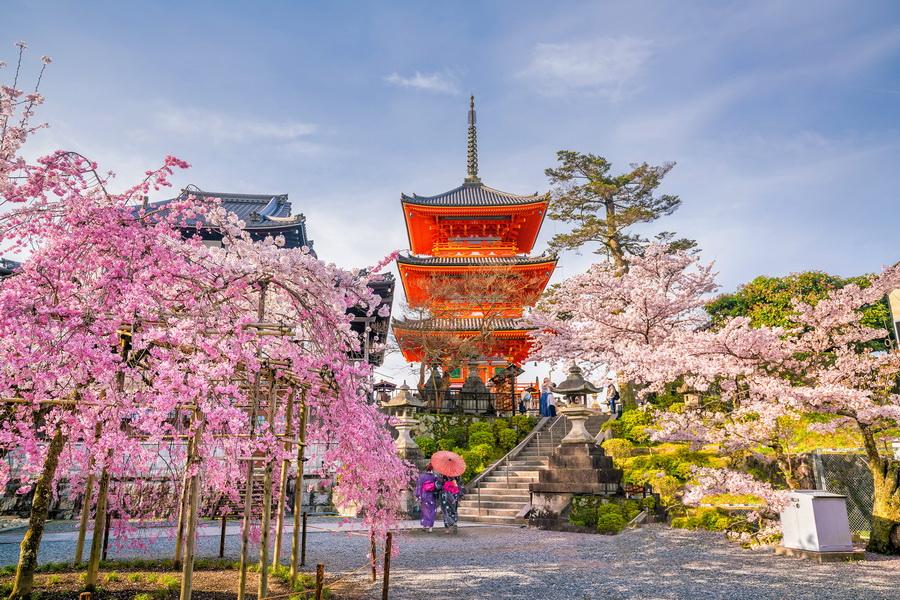 Пагоды  | 10 причин посетить Японию | ZestRadar