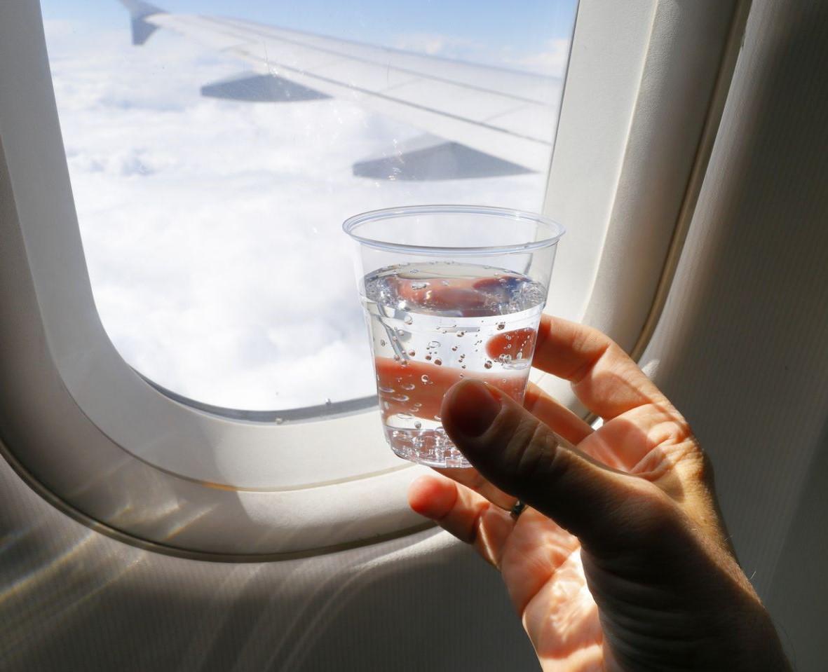 Пить газировку | 10 вещей, которые лучше не делать на борту | Brain Berries