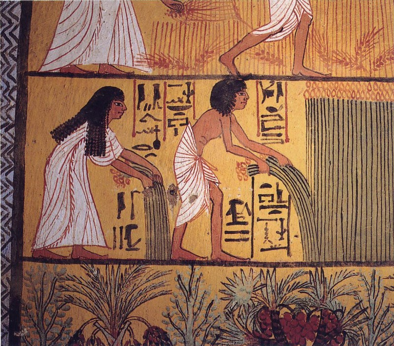 They Drank Beer Regularly | 8 Amazing Facts About Ancient Egypt | Brain Berries