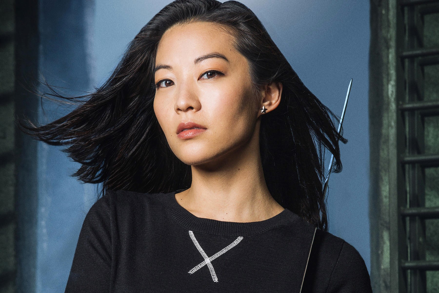 Arden Cho   7 Asian Actresses That Are Changing the Face of Hollywood   Brain Berries