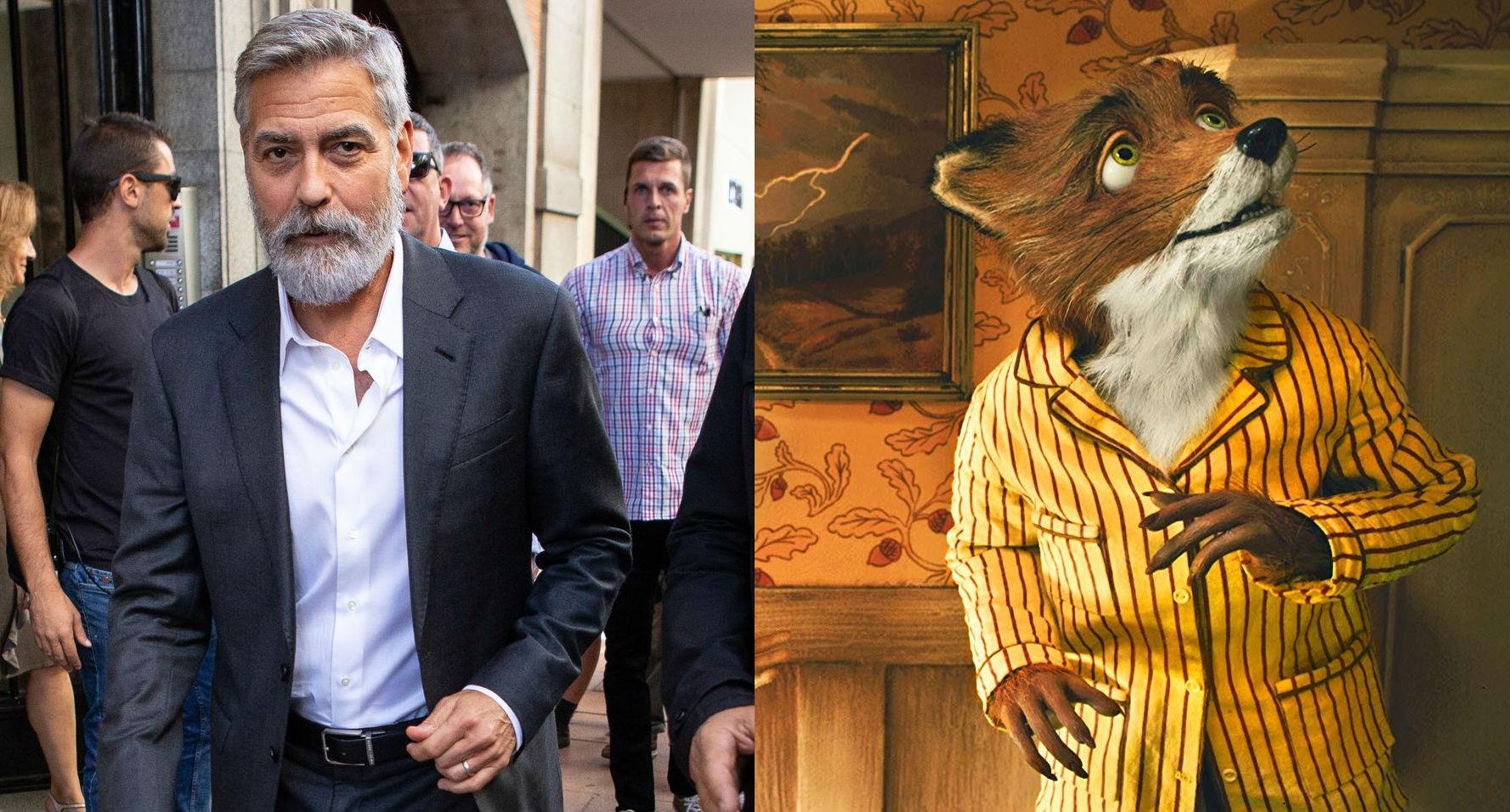 George Clooney – Fantastic Mr. Fox  | 21 Celebrities Who Voiced Your Favorite Cartoon Characters | Brain Berries