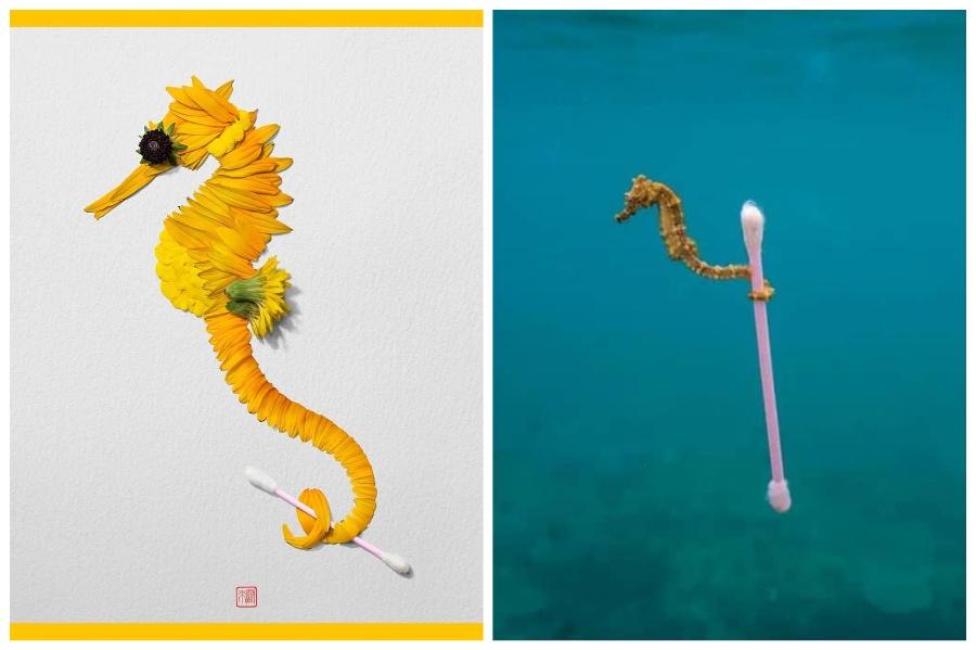 Artist Creates Images out of Flower Petals #1 | ZestRadar
