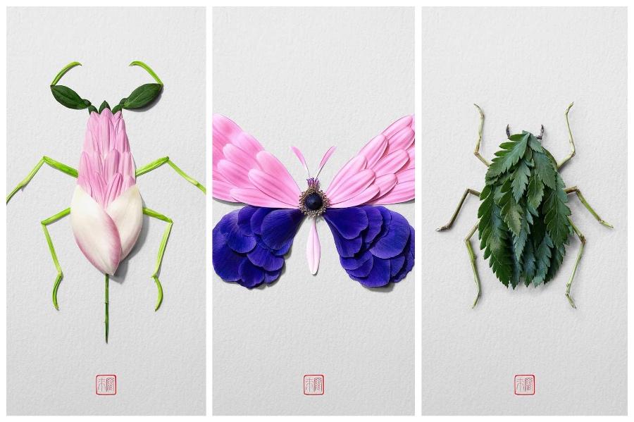Artist Creates Images out of Flower Petals #5 | ZestRadar