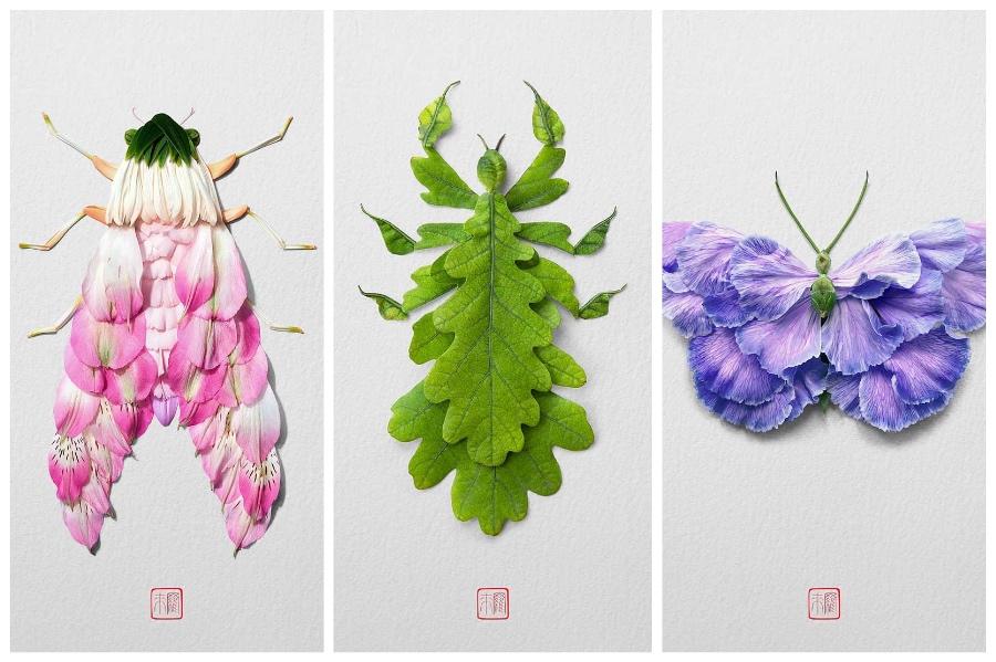 Artist Creates Images out of Flower Petals #6 | ZestRadar