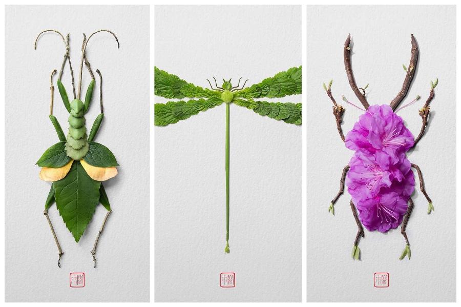 Artist Creates Images out of Flower Petals #7 | ZestRadar