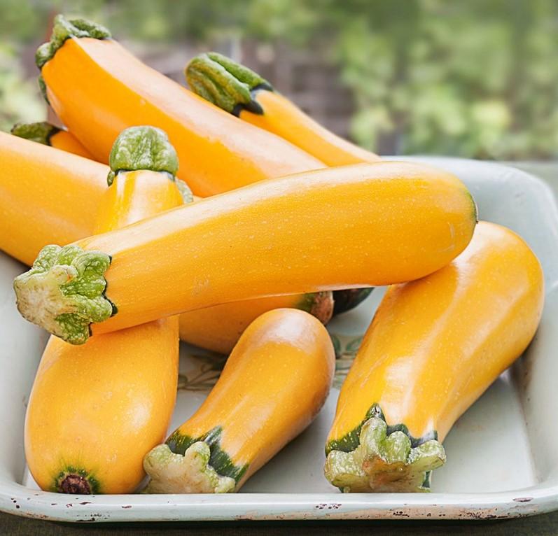 Yellow Zucchini | 6 Common Genetically Modified Foods | Brain Berries