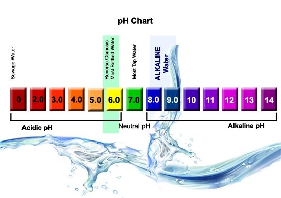 What is alkaline water? | Essential Things You Should Know About Alkaline Water | Brain Berries