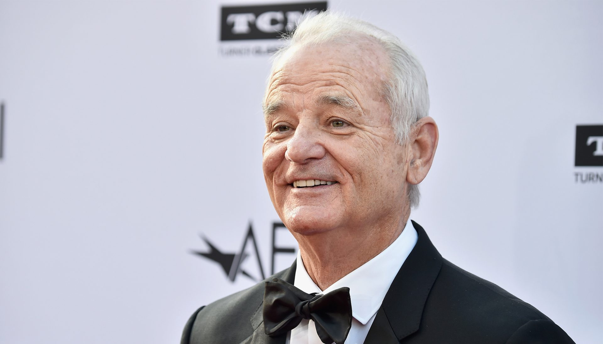 He Has No Agent or Publicist | 7 Reasons To Love Bill Murray | Brain Berries