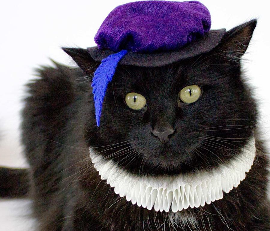 Самые забавные костюмы собак и котов на Хэллоуин #4 | ZestRadar