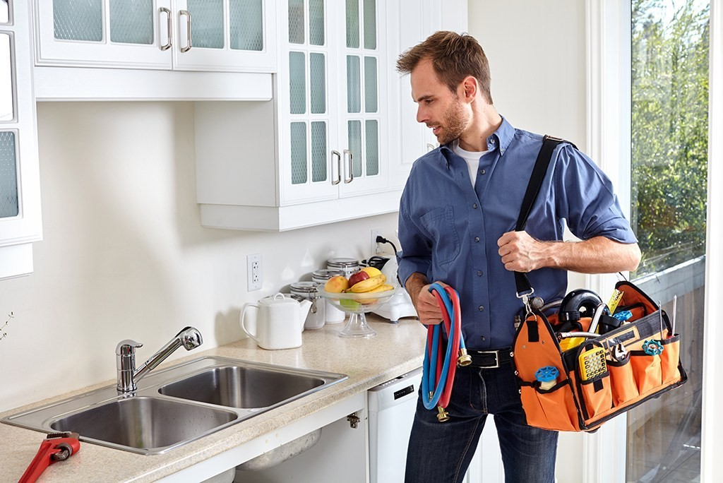 Black Friday is Big Business For the Plumbing Industry | 10 Thanksgiving Facts That You Will Gobble Up | Brain Berries