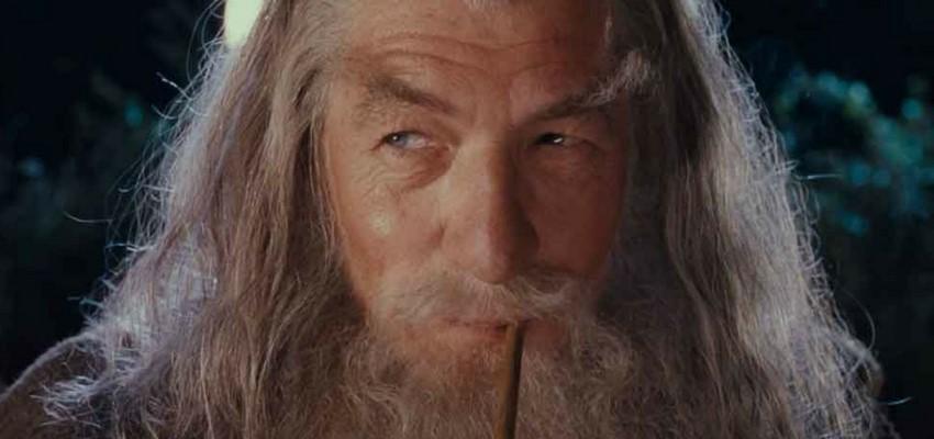 Ian McKellen | You Won't Believe That These 12 Actors Have Never Won an Oscar | Brain Berries