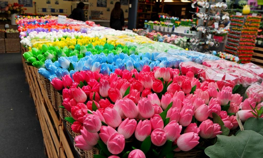 Цветочный рынок в Амстердаме | Топ-8 самых колоритных рынков мира | Brain Berries