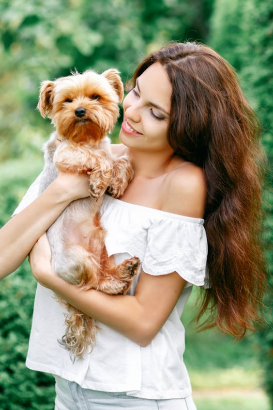 Dogs boost attraction| 7 Scientific Facts About Attraction You Can Use The Next Time You Go On A Date | ZestRadar