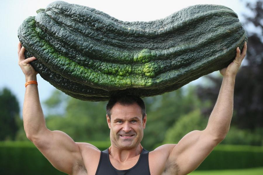 Кабачок | Топ-10 самых больших ягод в мире | ZestRadar