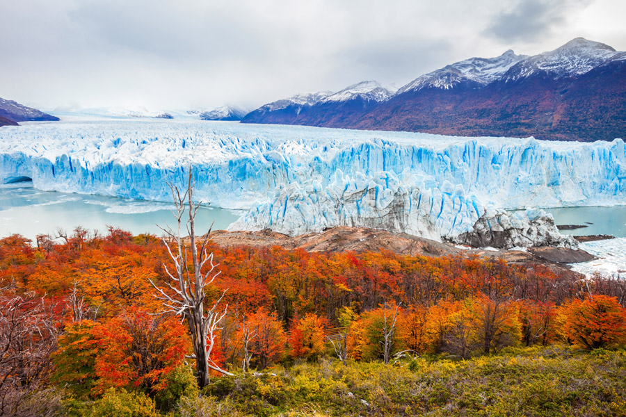 Argentina | This Is What Autumn Looks Like Around The World | ZestRadar