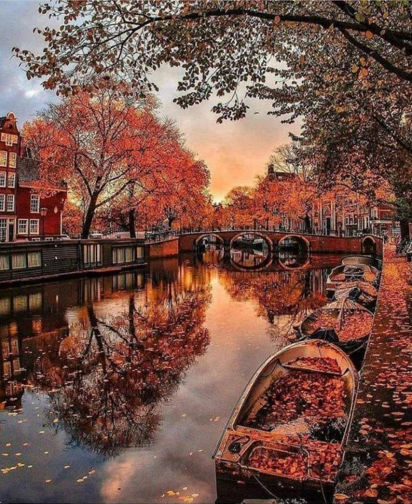 Netherlands | This Is What Autumn Looks Like Around The World | ZestRadar