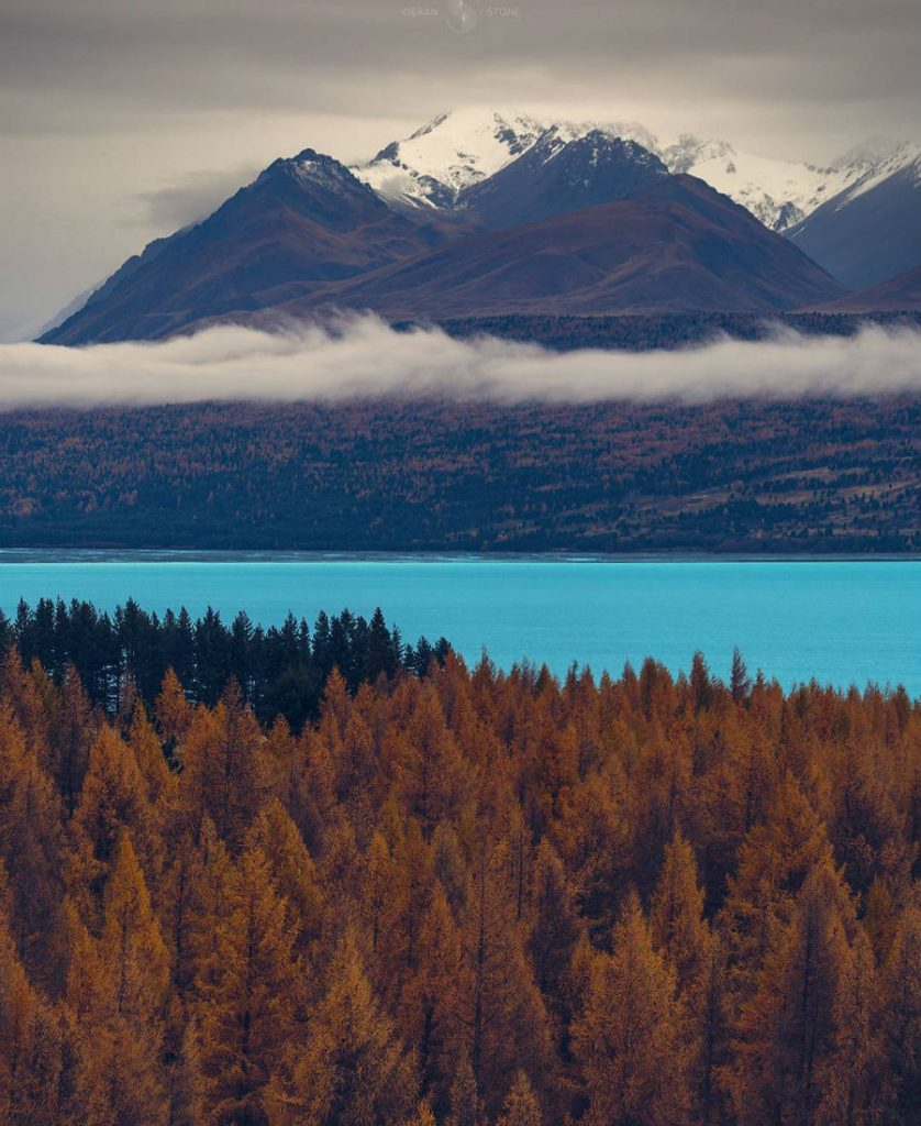 New Zeland | This Is What Autumn Looks Like Around The World | ZestRadar
