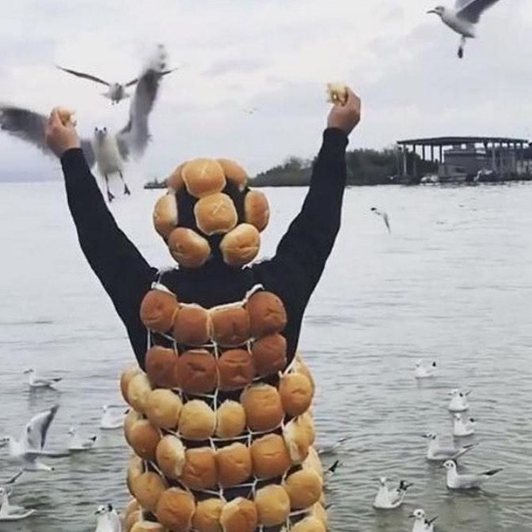Feed birds | Unsettling Food Art by @TotallyGourmet | Brain Berries