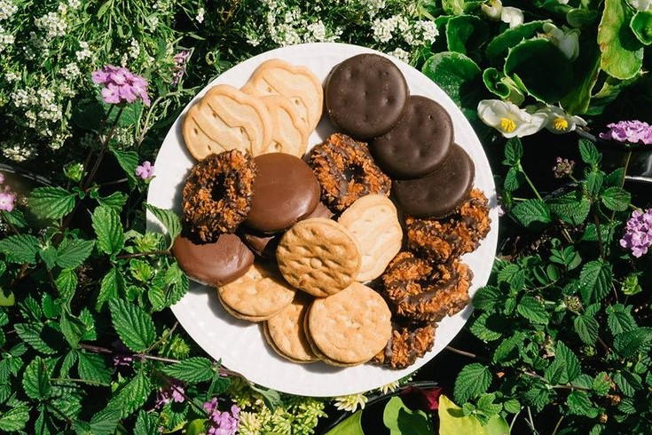 11. Girl Scout Cookies | 12 Glorious Foods That Defined Our Childhoods | Brain Berries