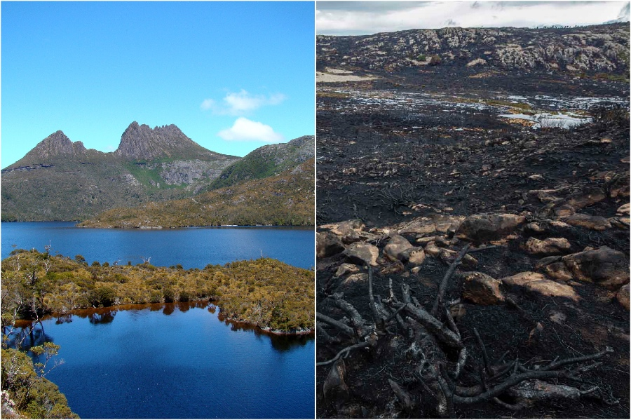 Lake Mackenzie, Tasmania, Australia  | The Historical Sights We Lost In The Last 5 Years | BrainBerries