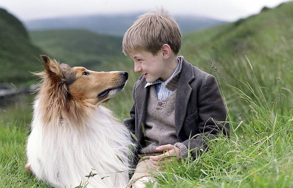 Пэл | 7 животных-актеров, которые покорили наши сердца | Brainberries