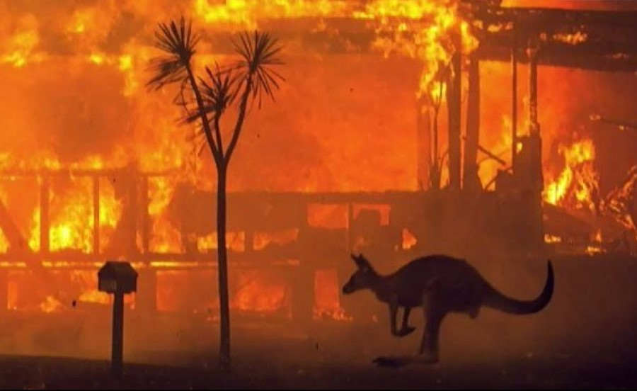 Засуха в Австралии | 7 причин поверить в глобальные изменения климата | Zestradar