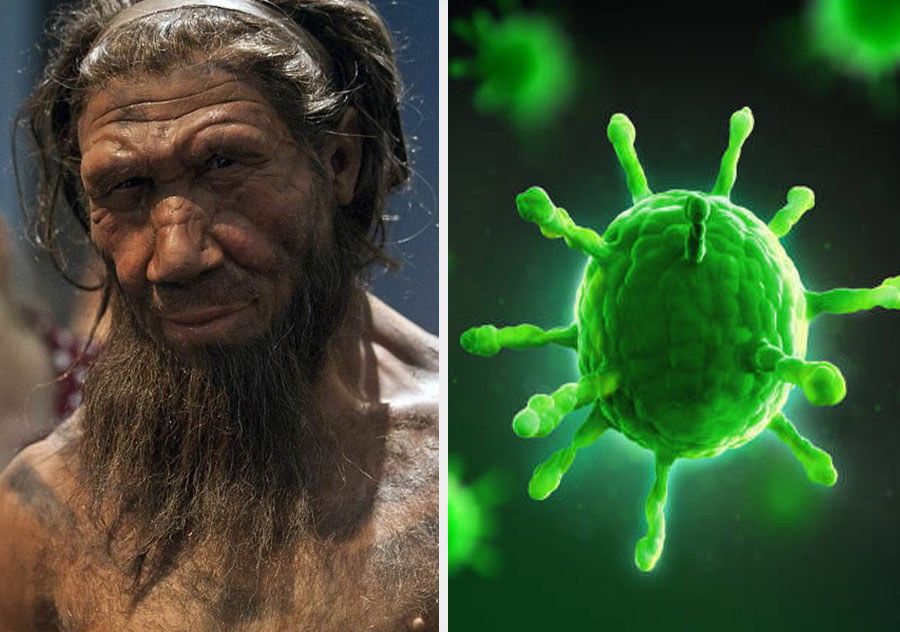 We all have viral DNA | 10 Mind-Bending Facts About Genes That Explain Everything | ZestRadar