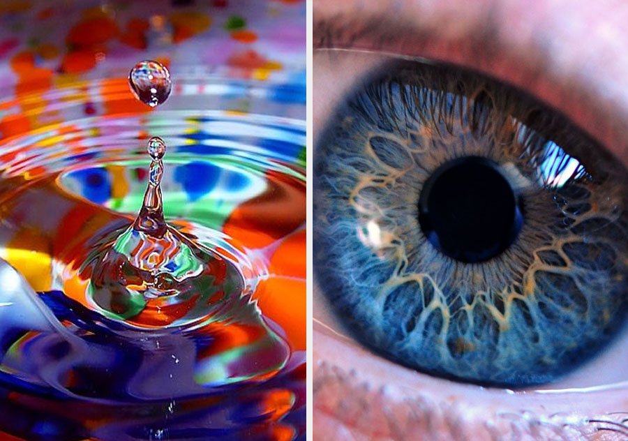 Some women really do see more colours | 10 Mind-Bending Facts About Genes That Explain Everything | ZestRadar
