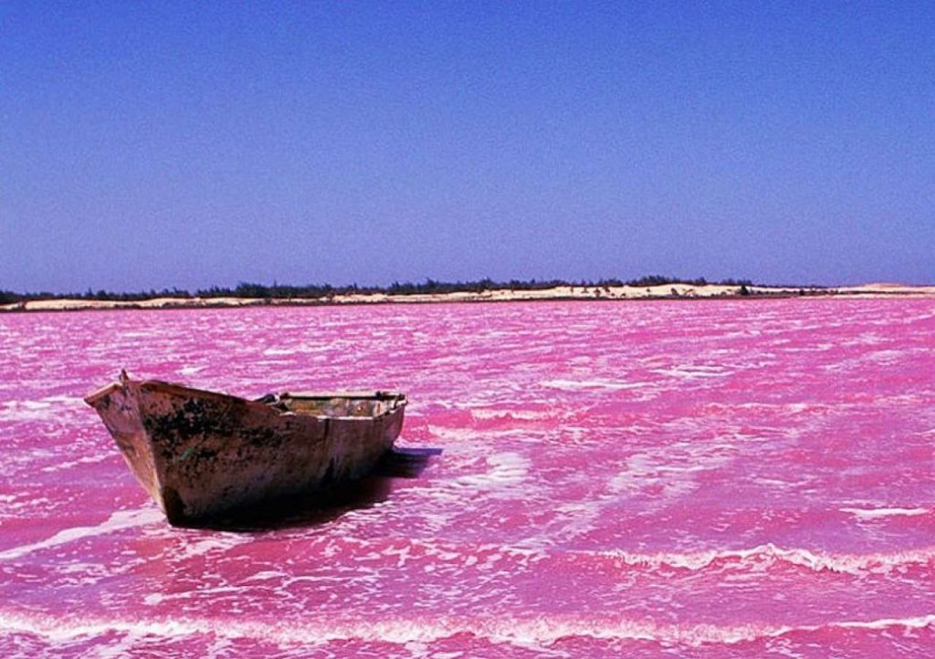 Lake Retba | 15 Weirdest Places Around The World You Should Visit In 2020 | ZestRadar
