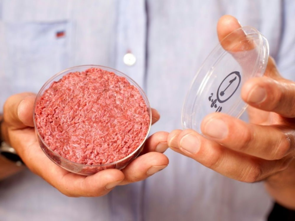 The first ever lab-grown hamburger | 9 Greatest Scientific Discoveries Of The Decade | Zestradar