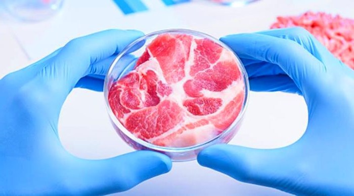 5. Lab-Grown Meat | Top 8 Innovative Products Of The 2010s' | Brain Berries