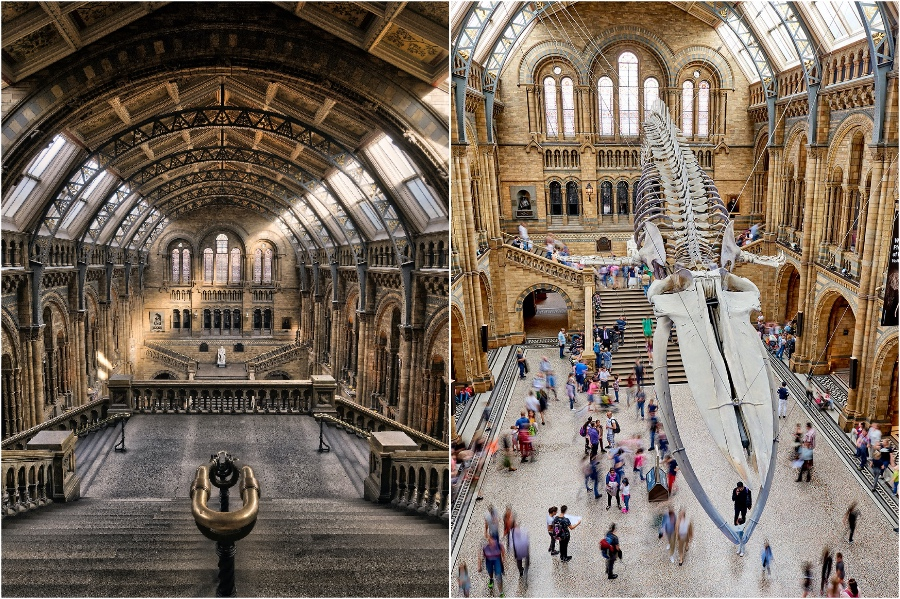 The Natural History Museum | 12 London Tourist Destinations Are So Good Even The Locals Love Them | Zestradar