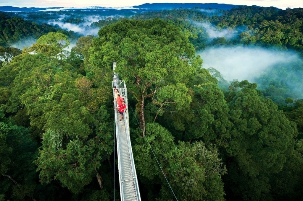 Carbon offsetting | These Are 2020's Top Travel Trends: Ecolodges, 'Microcations', And More | Zestradar