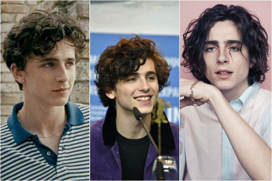 Timothee Chalamet | 10 Male Celebs With The Best Hair | Zestradar
