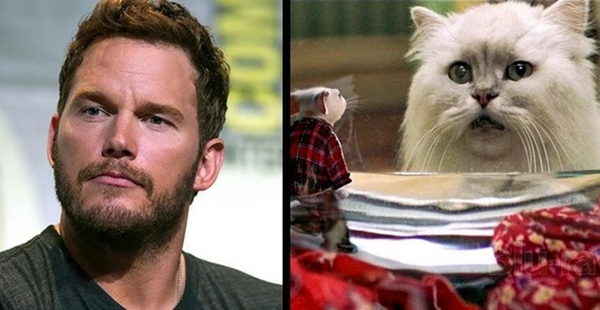 Крис Прэтт | Тайны любимых актеров, о которых мы и не подозревали | Zestrsdar