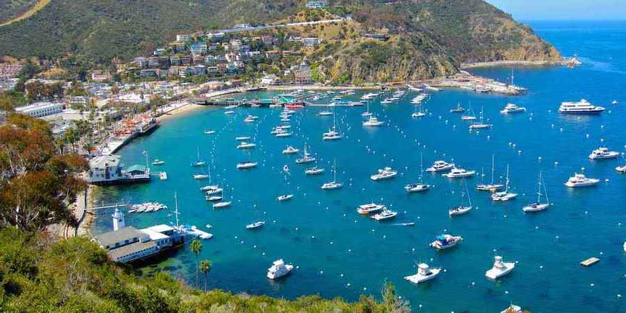 8.Santa Catalina Island, California | Top 10 Spring Holiday Destinations In US For 2020 | Brain Berries