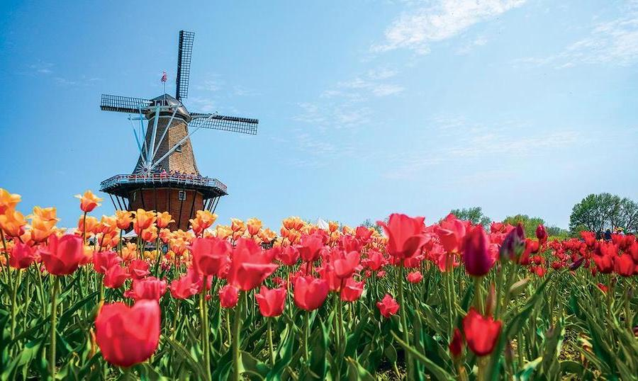 9.Holland, Michigan | Top 10 Spring Holiday Destinations In US For 2020 | Brain Berries