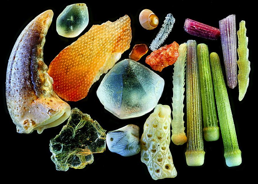 Песок | Предметы под микроскопом: удивительный макромир | Zestradar